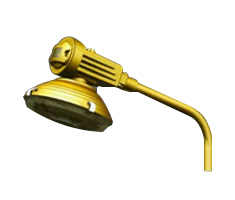 免维护防爆节能灯