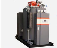 燃氣蒸汽鍋爐