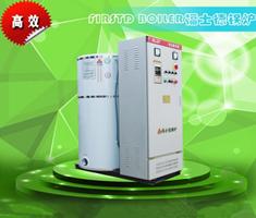 立式電熱熱水鍋爐