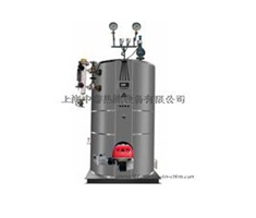 立式燃氣蒸汽鍋爐